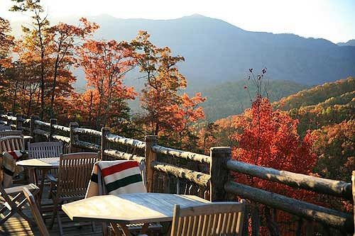 tree mountain season park autumn wooden overlooking surrounded