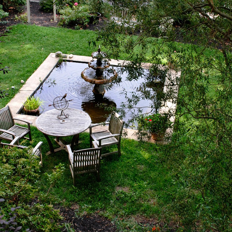 B&B Country Courtyard Historic Lounge Terrace tree grass wilderness pond park woodland Garden Forest backyard plant Jungle waterway yard trail stream