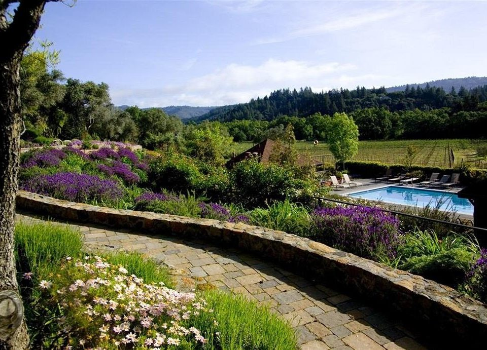 B&B Garden Winery tree grass flower River landscape botanical garden woodland shrub pond waterway traveling Forest wooded hillside lush