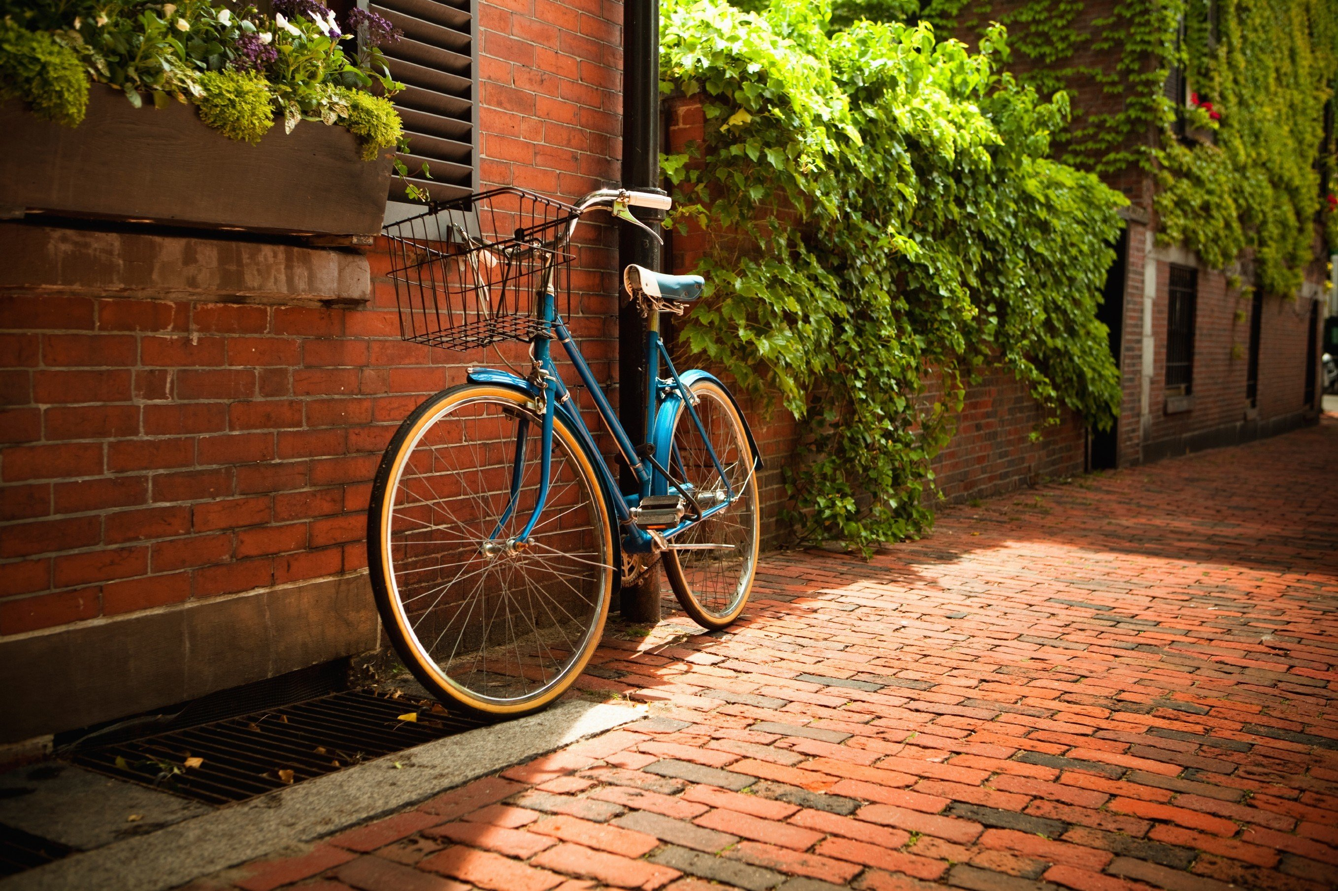 Budget outdoor bicycle ground tree brick building sidewalk parked vehicle lane road way cycling street leaning sports equipment wood stone walkway curb