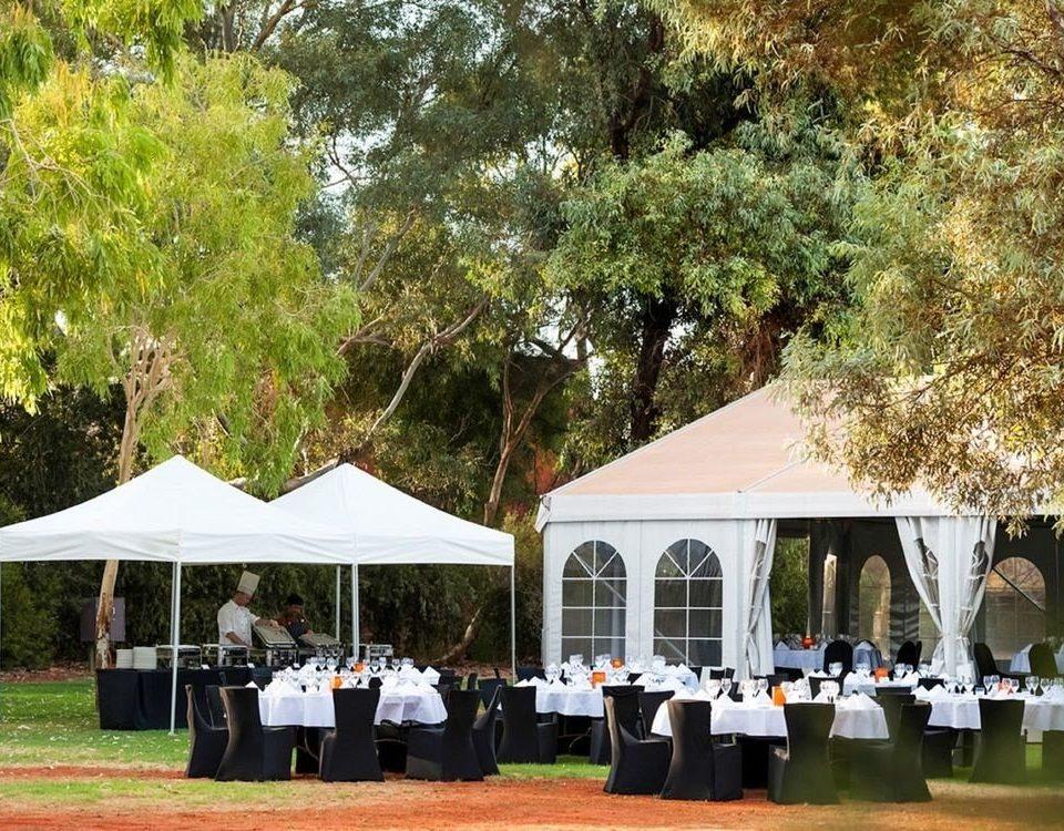 tree grass tent ceremony wedding backyard