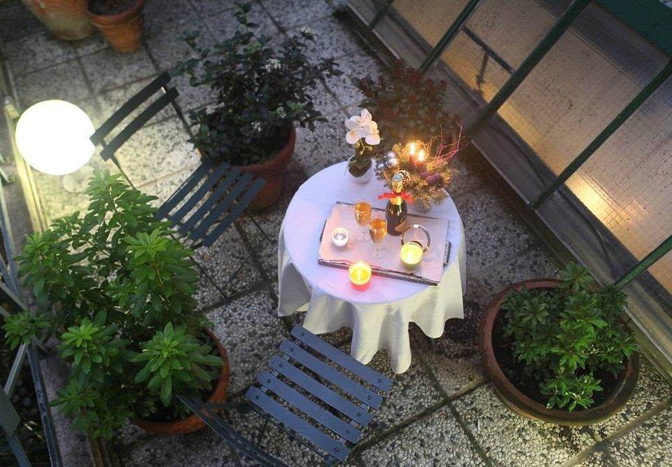 plant lighting flower christmas decoration backyard yard stone dining table