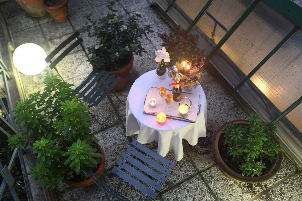 plant lighting flower christmas decoration backyard yard stone dining table