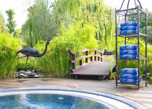tree swimming pool leisure backyard outdoor play equipment