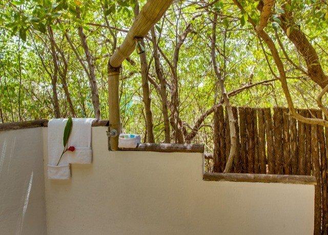 tree property backyard