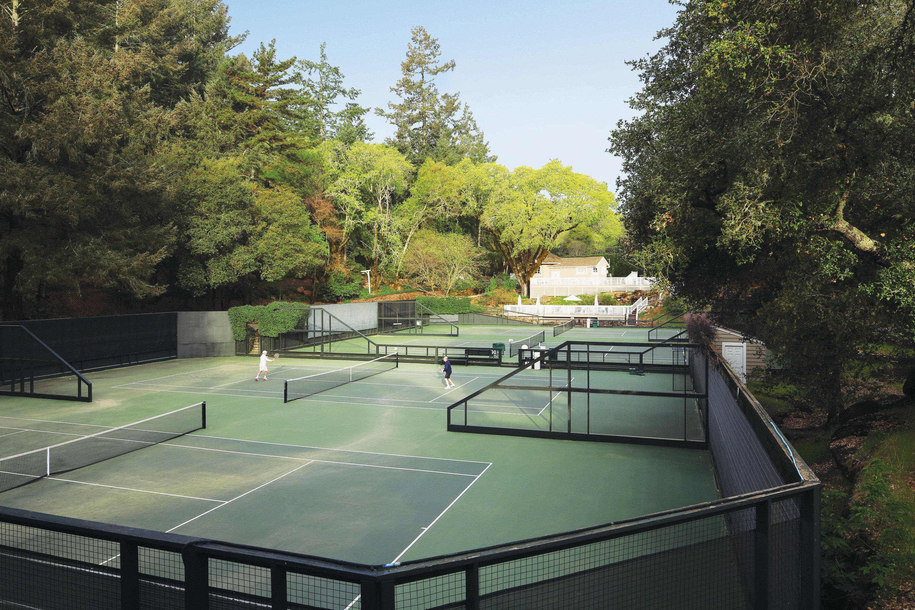tree structure swimming pool tennis sport venue backyard
