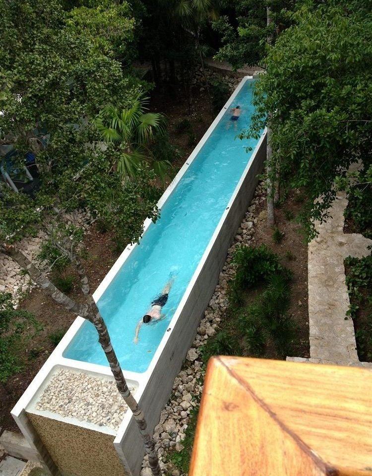 tree swimming pool vehicle waterway backyard