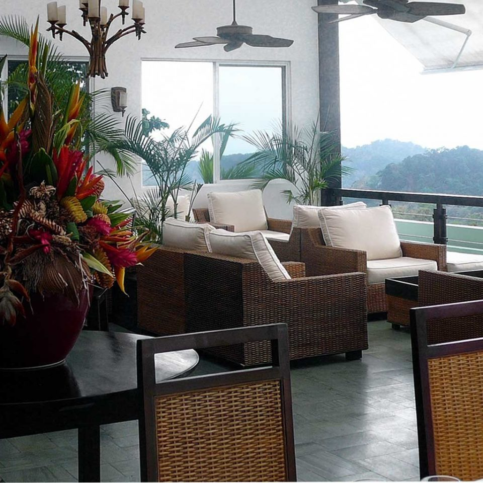 Balcony Bar Drink Eat Jungle Lounge Outdoors Scenic views Terrace property restaurant home living room cottage plant