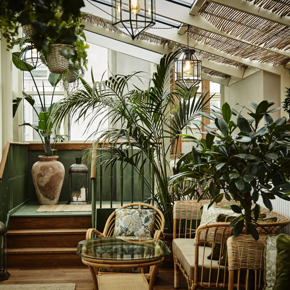 Boutique Hotels Copenhagen Denmark Hotels home plant Courtyard Balcony outdoor structure houseplant living room flower tree Lobby house