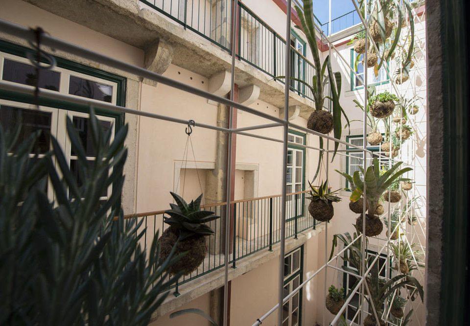 plant house building home Balcony glass