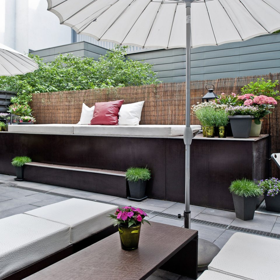 City Deck Drink Grounds Modern building backyard Courtyard outdoor structure floristry Patio Balcony landscape architect