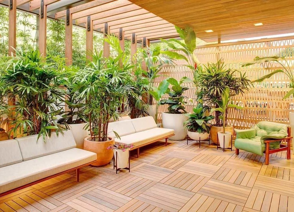 building property plant outdoor structure Patio Courtyard home roof backyard Garden Balcony houseplant landscaping yard Deck