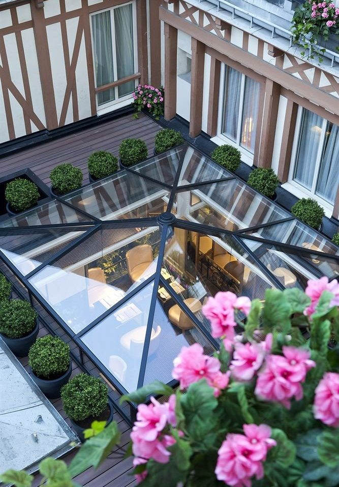 flower Garden Balcony plant floristry yard backyard Courtyard outdoor structure greenhouse lawn