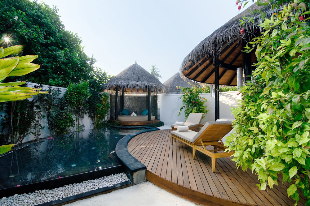 tree Resort house backyard green swimming pool cottage home Courtyard Villa Garden outdoor structure yard flower Balcony surrounded day