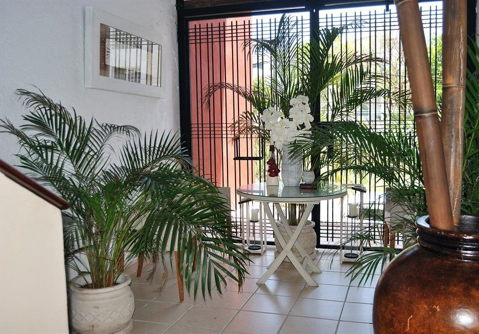 plant property house home Courtyard condominium Balcony Villa porch backyard hacienda outdoor structure mansion Lobby