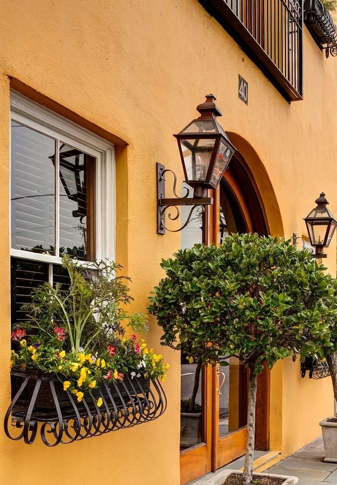 tree plant house Balcony home Courtyard Villa stone
