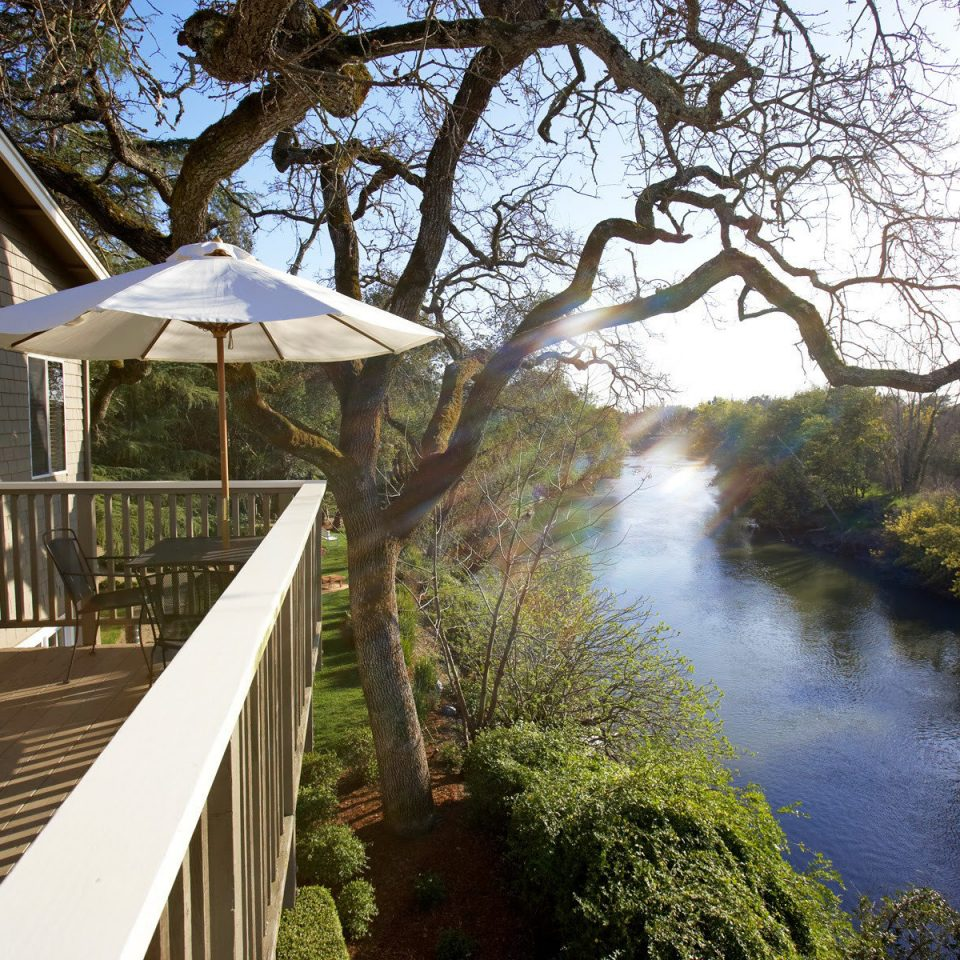 Balcony Deck Inn Romance Romantic Scenic views tree water building River flower sunlight waterway surrounded
