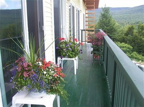 property building flower Balcony plant porch backyard cottage outdoor structure home yard walkway Villa swimming pool