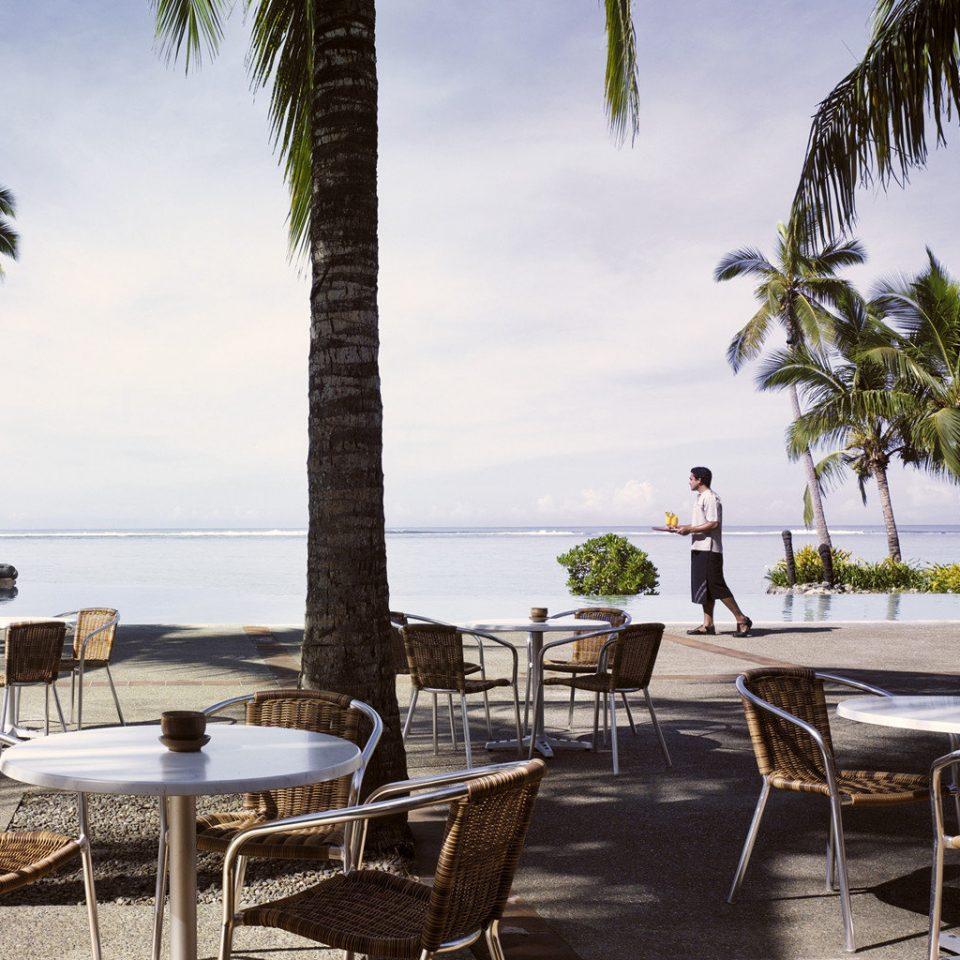 Bar Beach Beachfront Dining Drink Eat Luxury Ocean tree sky chair palm property Resort restaurant Villa caribbean condominium lined sandy shade