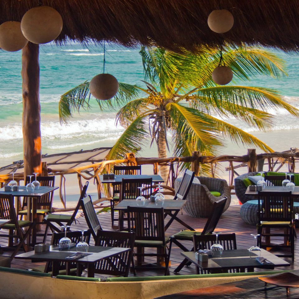 Bar Beach Beachfront Dining Drink Eat water leisure chair Resort restaurant caribbean arecales