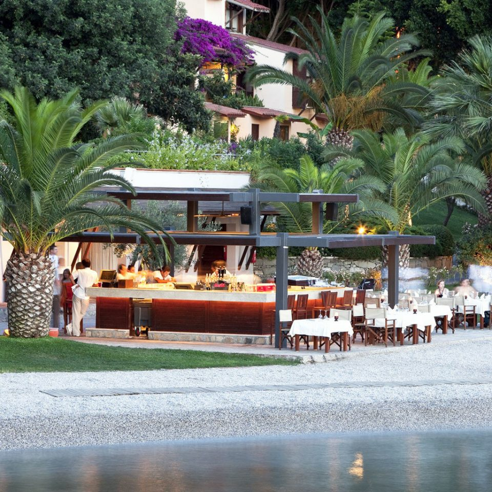 Bar Beach Beachfront Dining Drink Eat Ocean Patio Terrace Waterfront tree Resort park restaurant Garden shrine