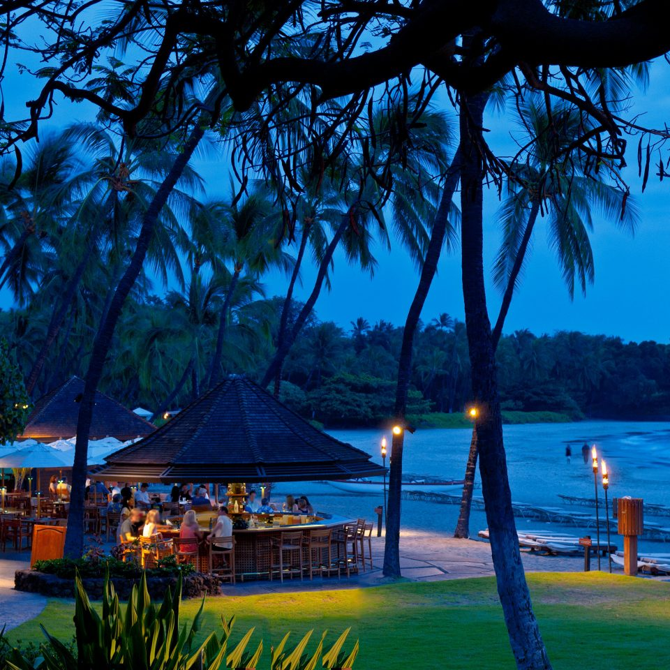 Bar Beach Beachfront Drink Jetsetter Guides Lounge Nightlife Ocean Resort Scenic views tree water River arecales tropics Sea overlooking plant lined shore