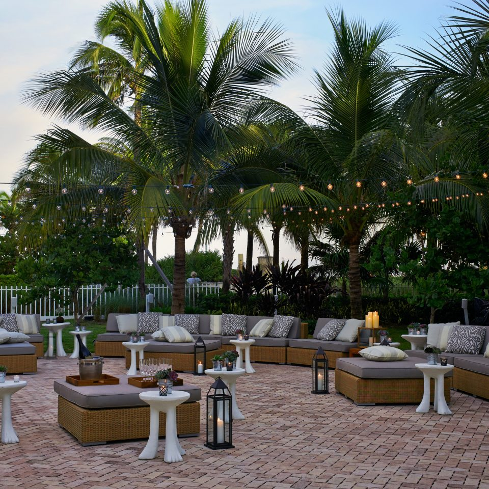 Bar Beach Drink Ocean Resort tree sky property arecales plant Villa home condominium backyard restaurant hacienda palm family Courtyard Garden palm
