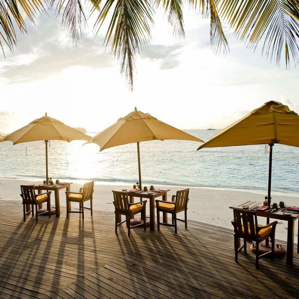 Bar Beach Dining Drink Eat Ocean umbrella water chair leisure Resort lined set palm shore
