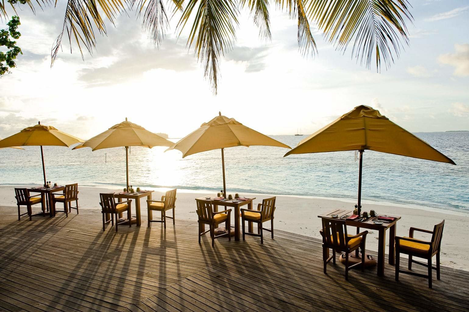 Bar Beach Dining Drink Eat Ocean umbrella water chair leisure Resort lined set palm shore