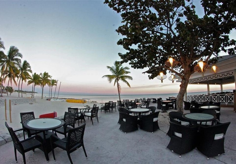 Bar Dining Drink Eat Luxury Modern tree sky Beach property Resort restaurant Villa lined sandy shade dining table