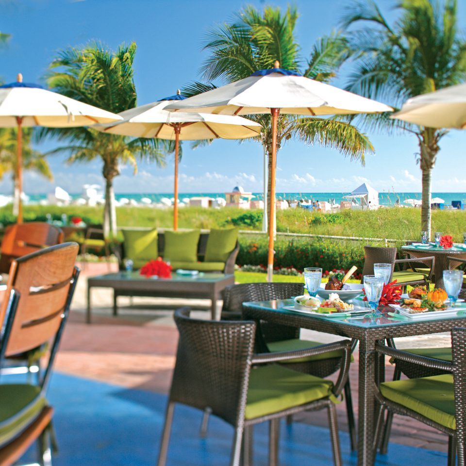 Bar Dining Drink Eat Modern sky chair umbrella tree leisure lawn Resort restaurant set Beach caribbean accessory empty day