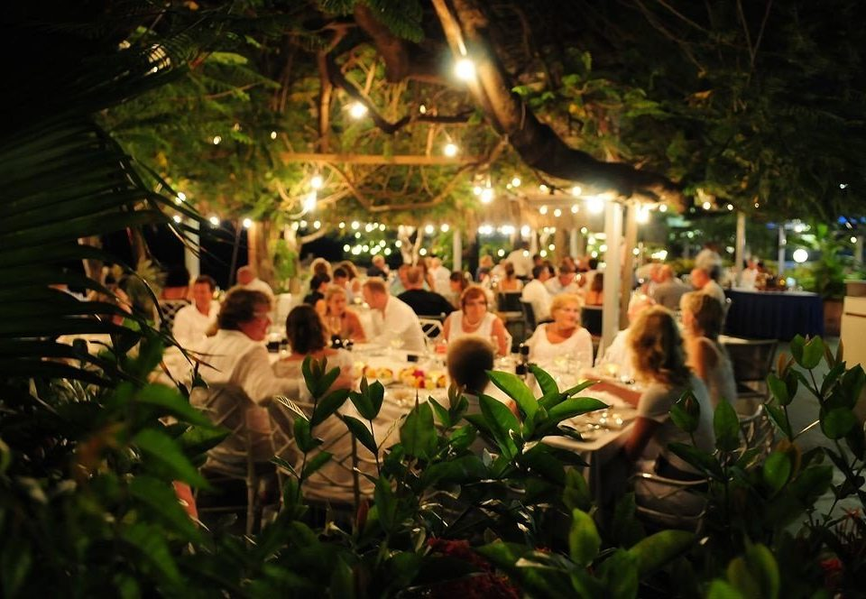 Bar Beachfront Dining Drink Eat Romantic tree flower group plant crowd