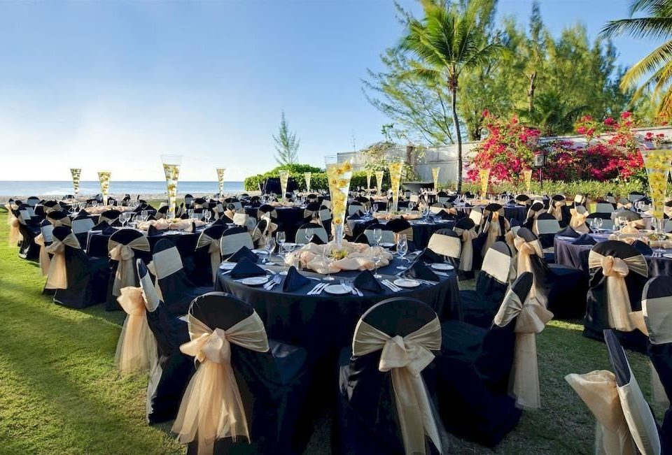 Bar Beachfront Dining Drink Eat Scenic views sky tree ceremony event banquet function hall day