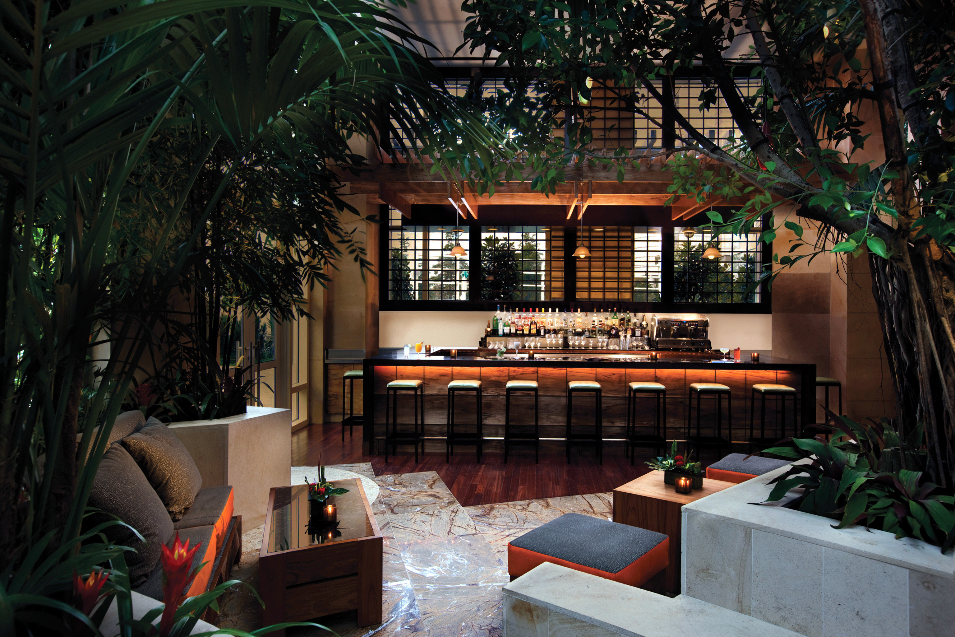Bar Casino Drink Luxury Modern tree plant house restaurant home Resort Lobby