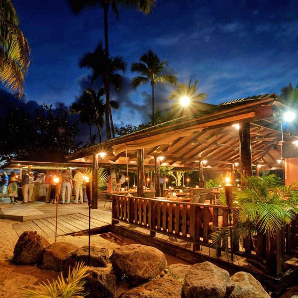 Bar Classic Cultural Drink Eco Grounds Island Nightlife night Resort evening light christmas decoration landscape lighting tree