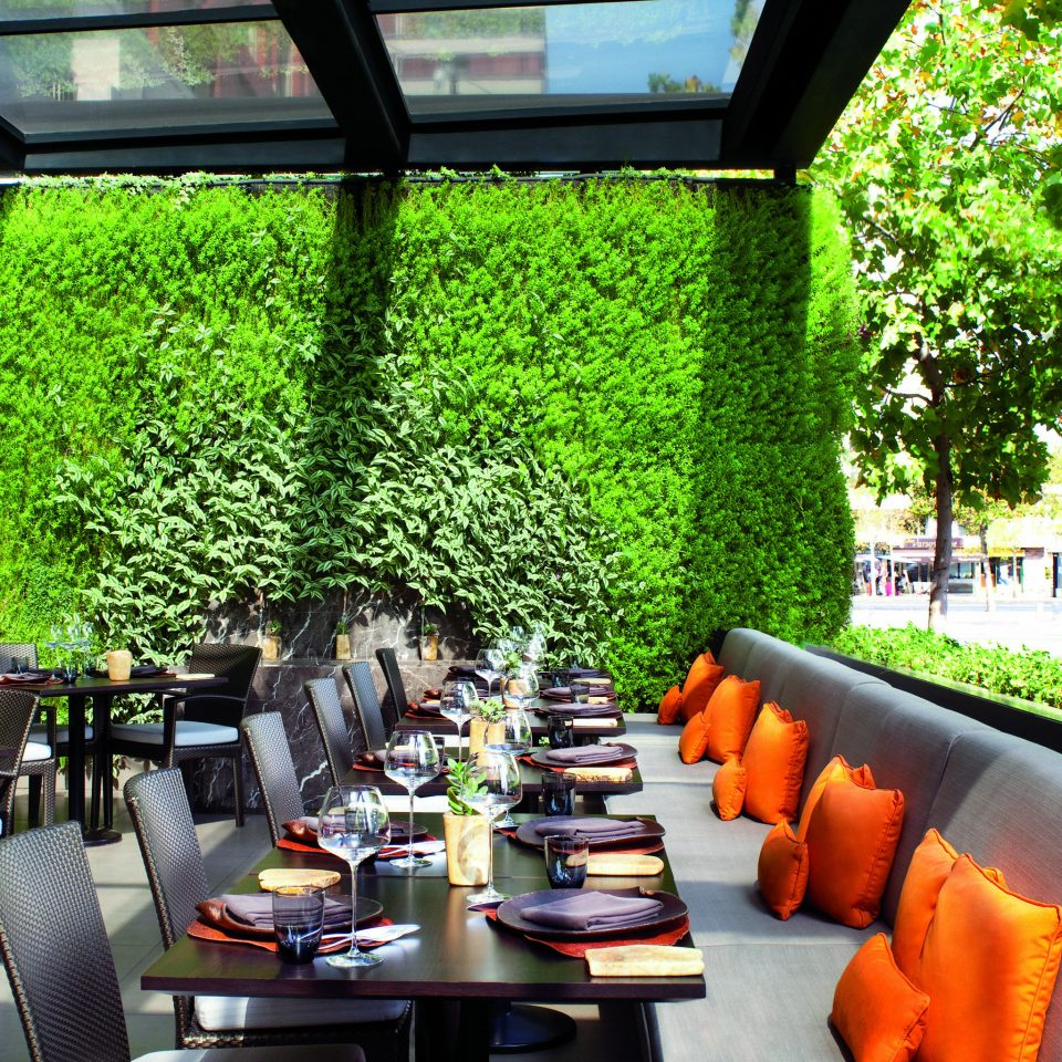 Bar Dining Drink Eat Hip Luxury Modern tree restaurant flower Courtyard Garden