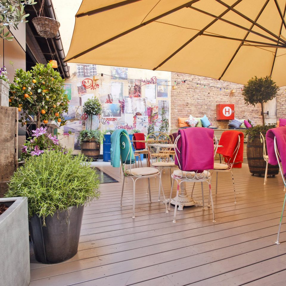 Bar Courtyard Dining Drink Eat Hip Lounge Modern Patio Terrace floristry spring flower stone