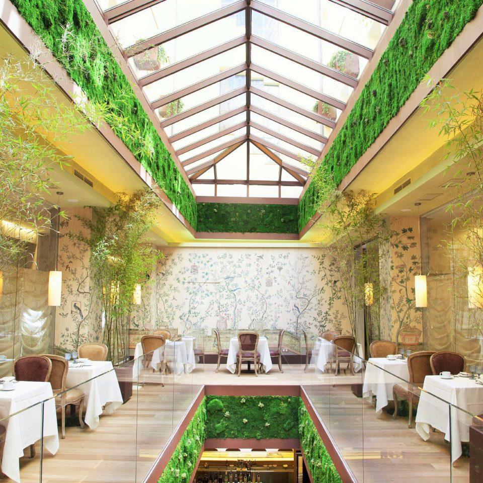 Bar Dining Eat Hip Lounge Luxury Modern tree property Resort building Lobby Courtyard palace mansion Villa hacienda eco hotel restaurant