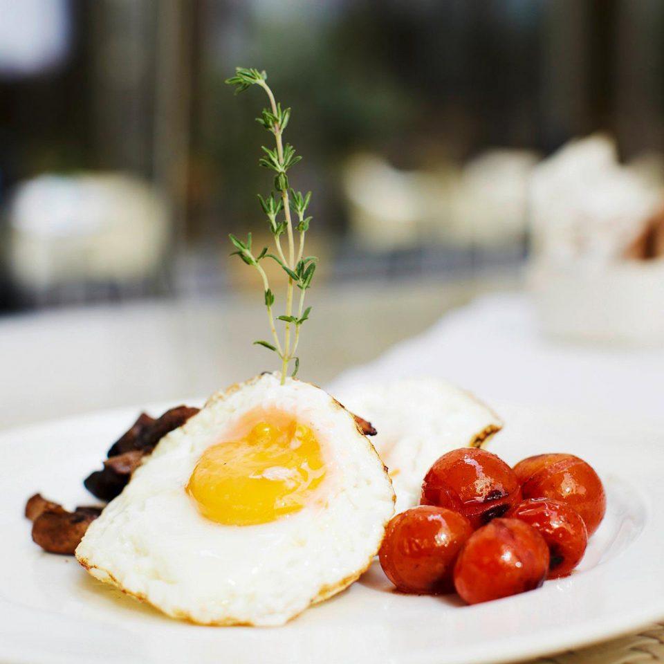 Bar Dining Drink Eat Modern plate food breakfast slice brunch dessert restaurant cuisine sense fruit sweetness