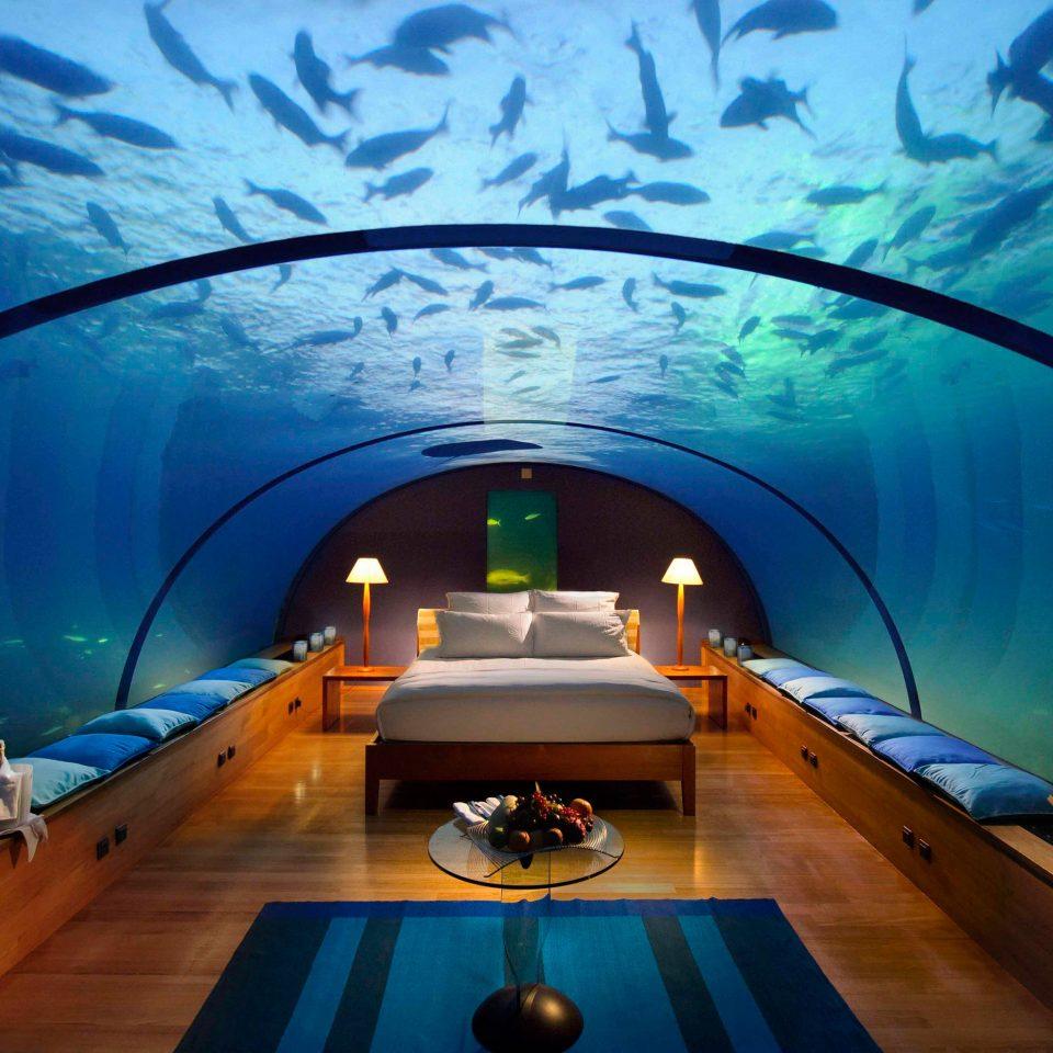 Bar Dining Drink Eat Elegant Entertainment Natural wonders Ocean Scenic views Wildlife screenshot swimming pool underwater