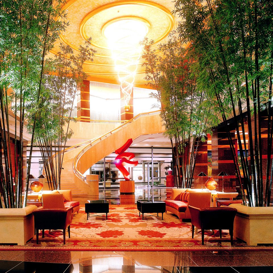 Bar Dining Drink Eat Hip Luxury Modern Romantic tree restaurant Lobby