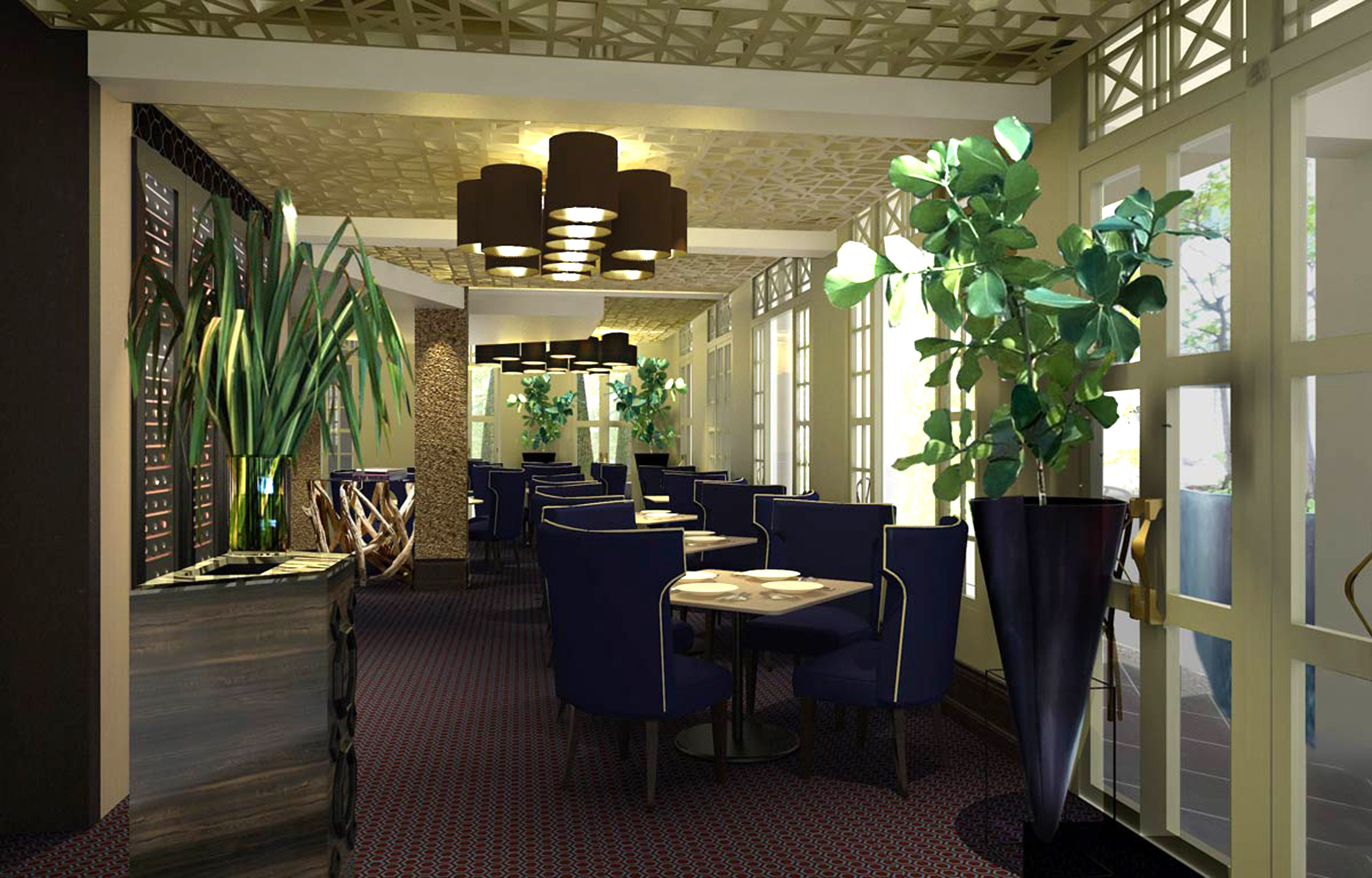 Bar Dining Drink Eat Luxury Modern restaurant Lobby home plant