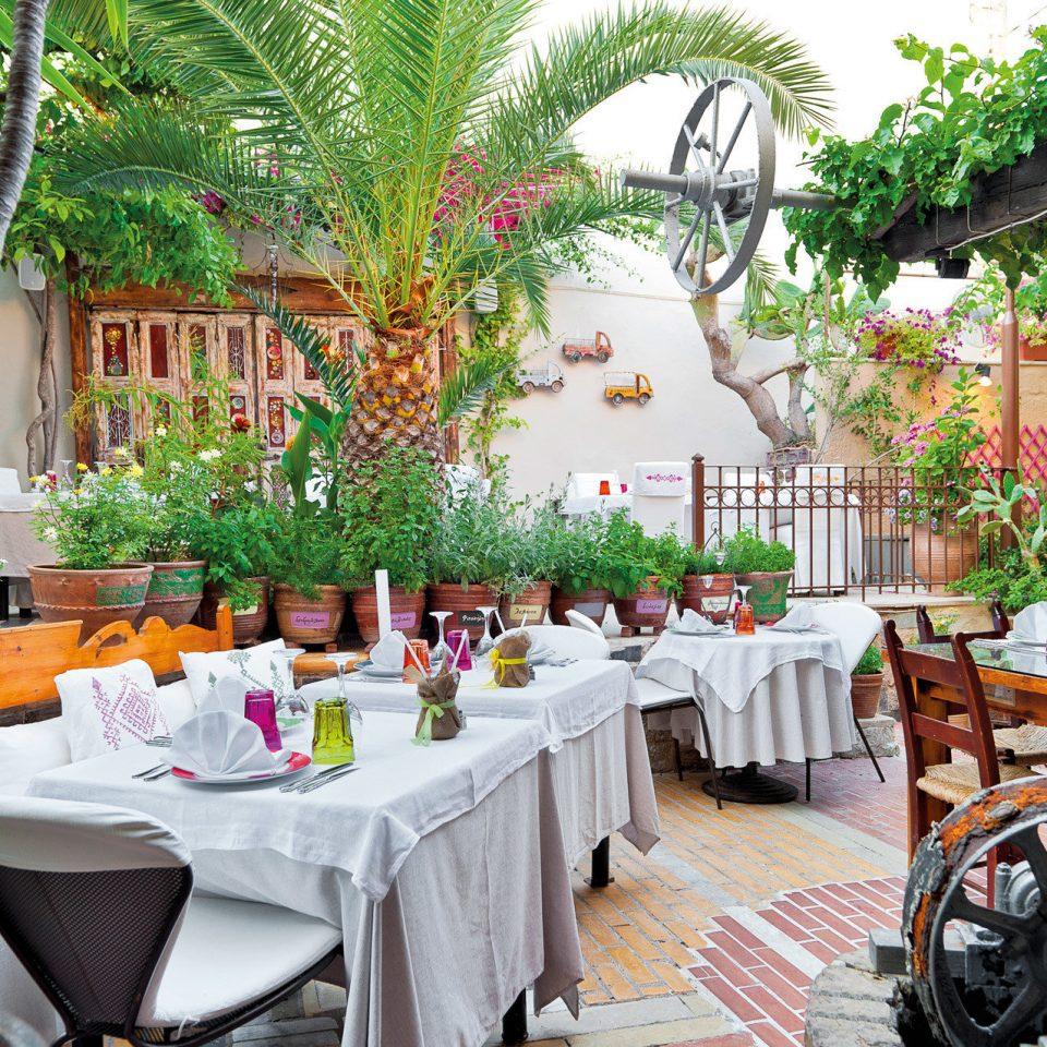 Bar Dining Drink Eat Elegant Luxury Modern Romantic tree restaurant Resort floristry flower buffet