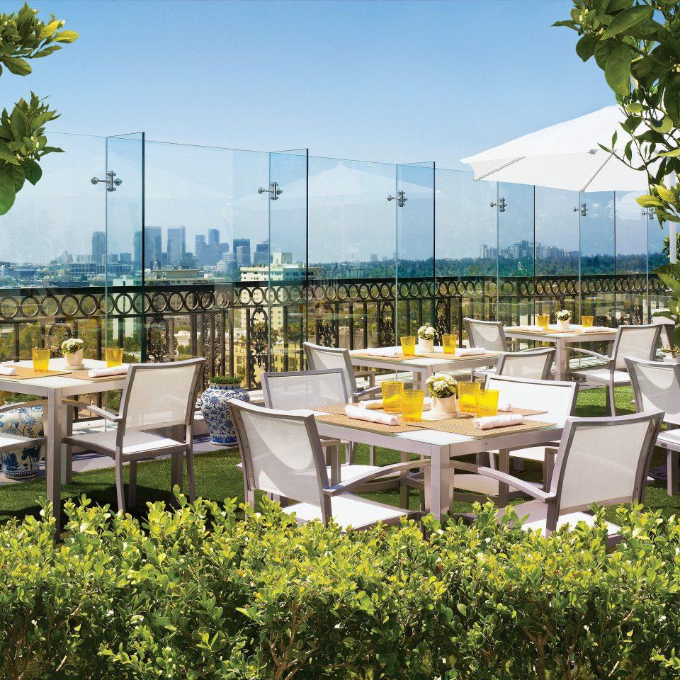 Bar Dining Drink Eat Luxury Modern tree sky Resort backyard condominium flower restaurant convention center overlooking