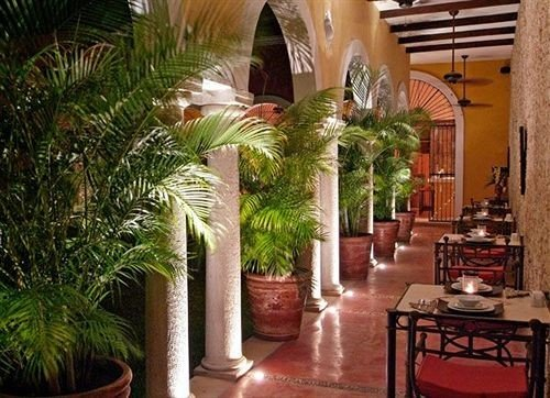Bar Dining Drink Eat Luxury property Resort plant restaurant hacienda home Villa stone dining table