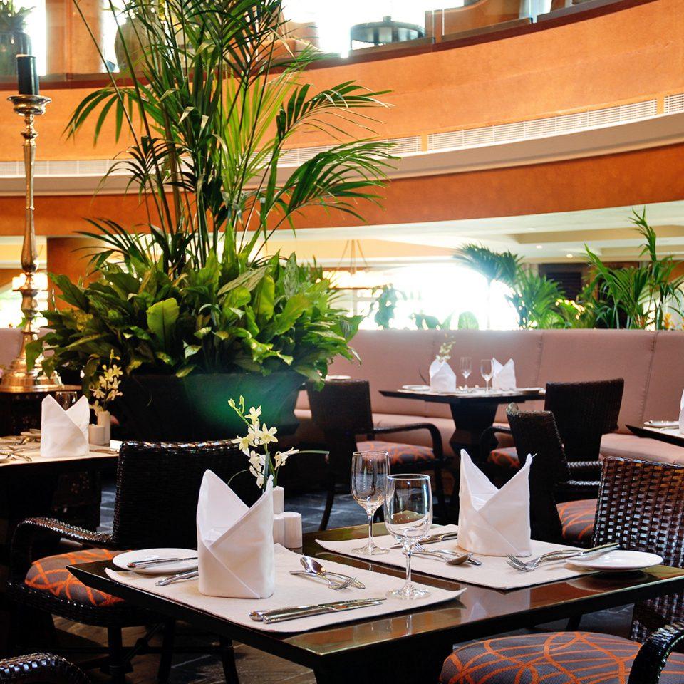 Bar Dining Drink Eat restaurant plant Lobby Resort café dining table