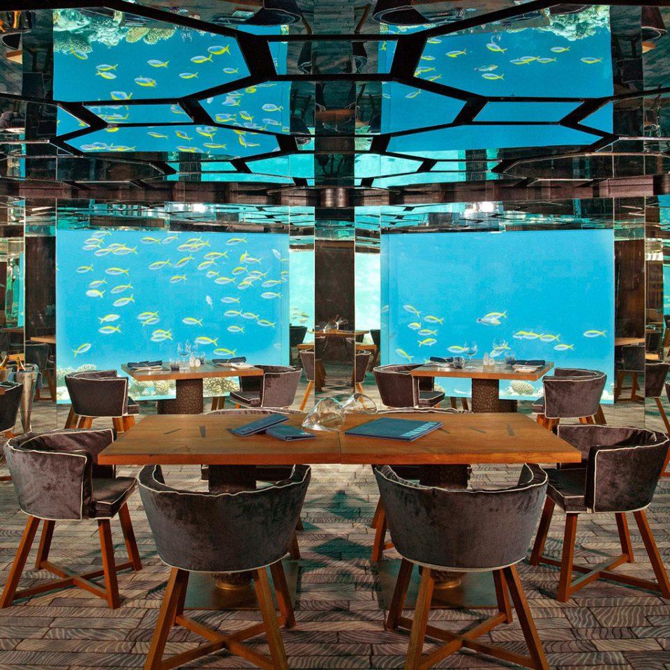 Bar Dining Drink Eat Elegant Hip Luxury Modern Ocean Waterfront chair restaurant Resort