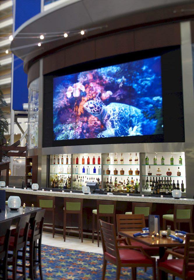Bar Dining Drink Eat Luxury Modern display device set