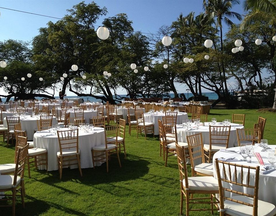 Bar Dining Drink Eat Hip Luxury Scenic views Tropical tree grass sky chair wedding ceremony backyard set wedding reception lawn overlooking