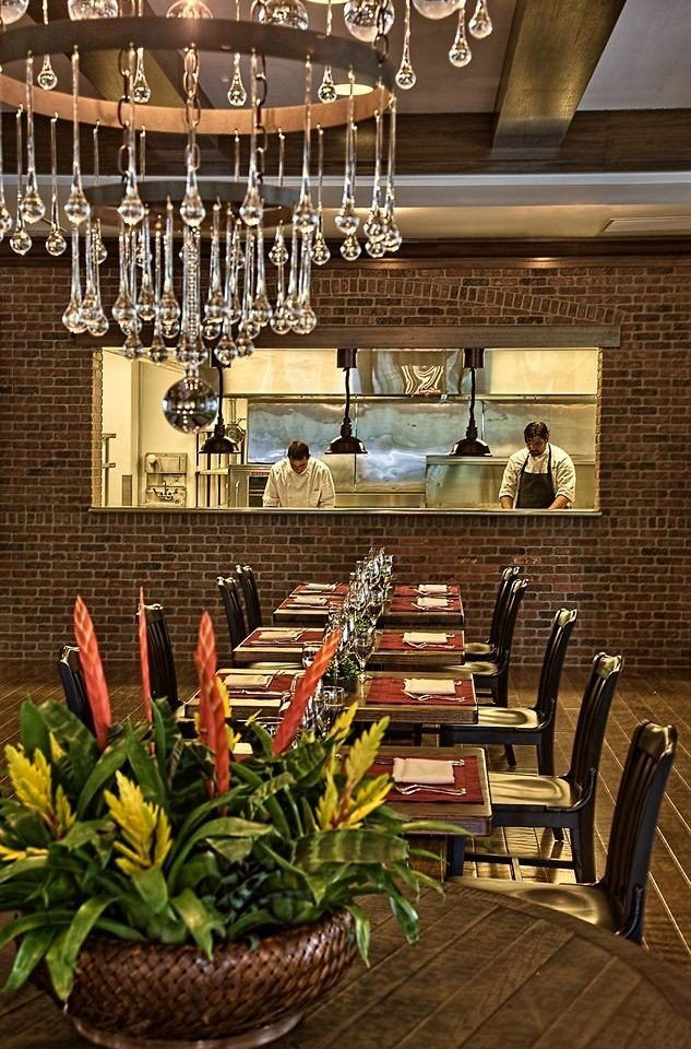 Bar Dining Drink Eat Luxury Modern restaurant floristry